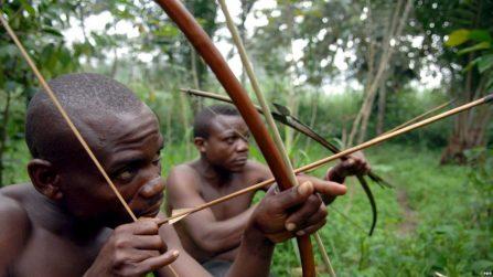 Une société forestière française accusée de détruire l'habitat des Pygmées au Cameroun