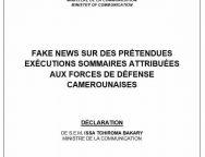 Fake News sur des prétendues exécutions sommaires attribuées aux forces de défense camerounaises